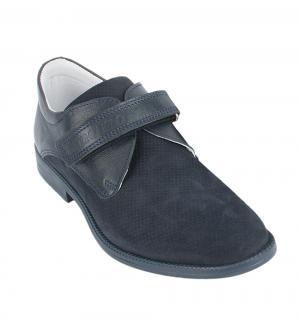 Туфли , цвет: синий Dandino
