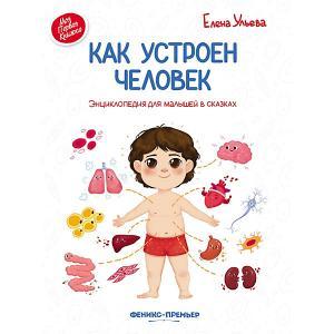 Энциклопедия для малышей Как устроен человек, в сказках Fenix