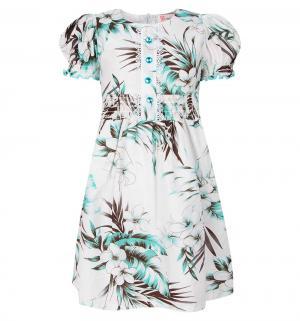 Платье , цвет: бирюзовый Damy-M