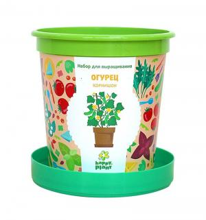 Набор  Горшок Огурец Корнишон для выращивания (бантик) Happy Plant