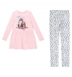 Комплект платье/леггинсы  Male, цвет: розовый/серый Acoola