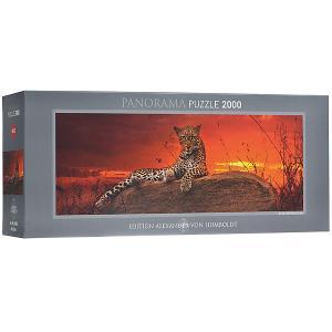 Пазлы  Леопард на рассвете, 2000 деталей , панорама HEYE