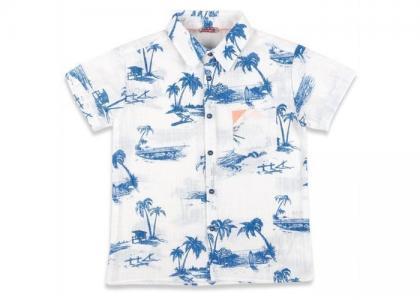 Рубашка для мальчика 71Z3SPJ81 Zeyland