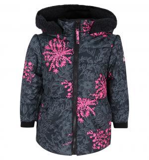 Куртка , цвет: черный/фуксия Big chill by Broadway kids