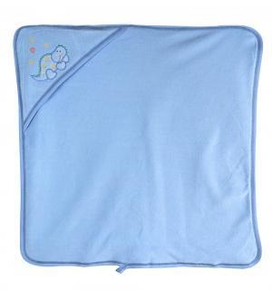 Комплект для купания полотенце/рукавичка Kapielowy , цвет: голубой Sofija