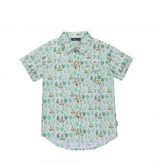 Рубашка  Кактусы Luminoso