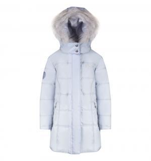 Пальто , цвет: голубой Gusti
