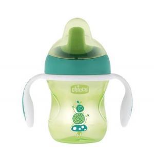 Чашка-поильник  Training cup, цвет: зеленый Chicco