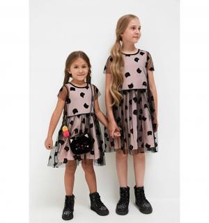 Платье , цвет: черный Acoola